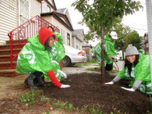 New Jersey Tree Foundation Greens Communities on TD Tree Days